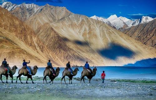 viaggio in india ladakh