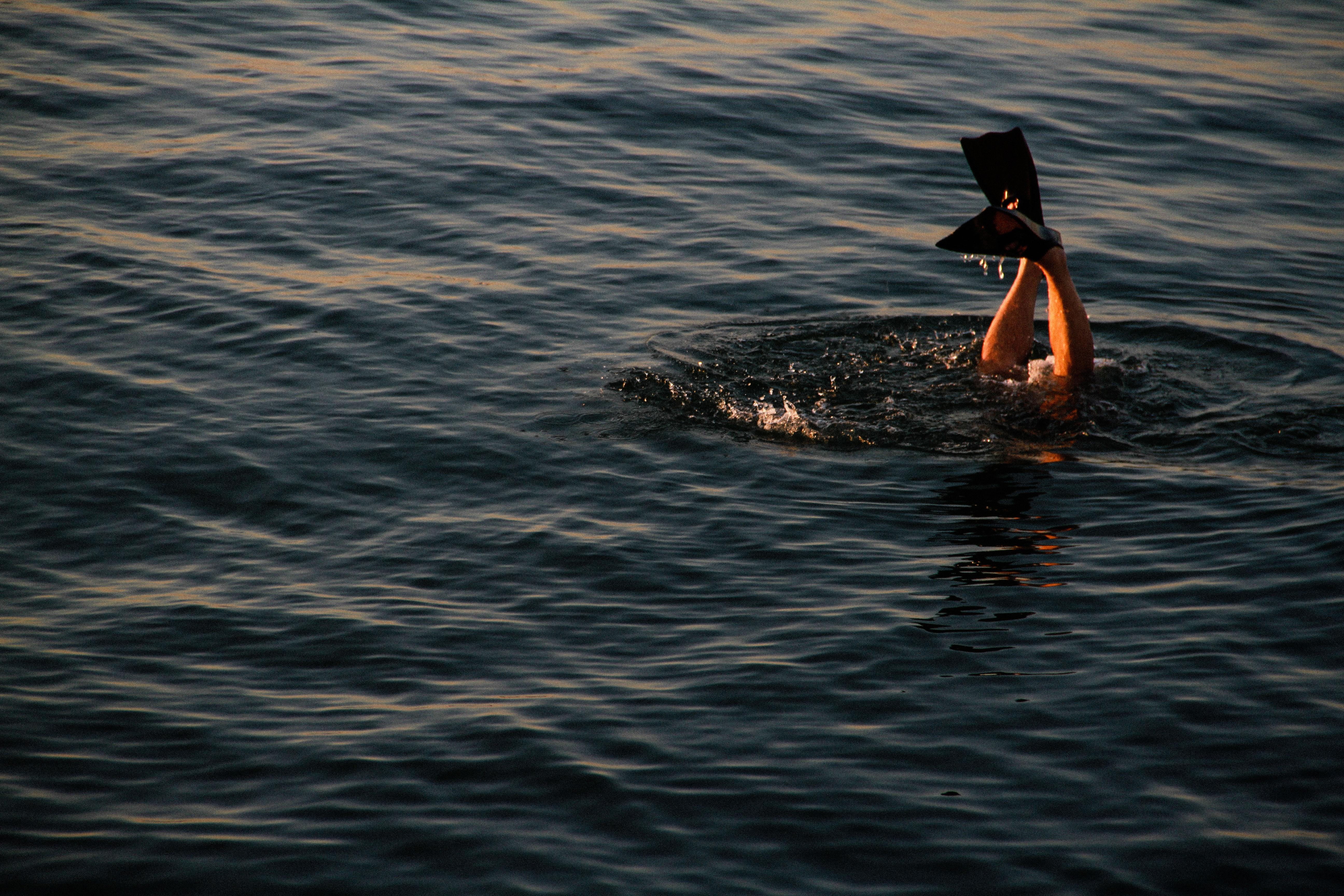 swimtrekking baratti