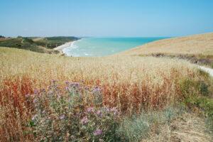 Foto della riserva naturale di Punta aderci in Abruzzo, con mare di sfondo