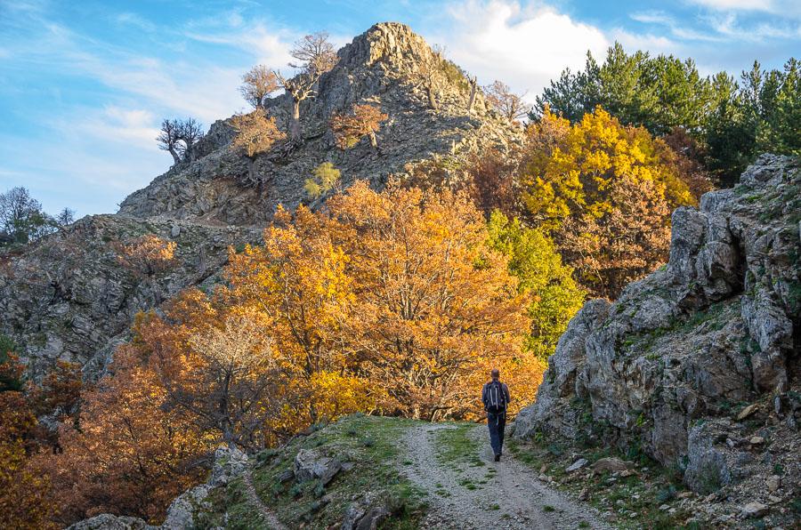Trekking Aspromonte Greco